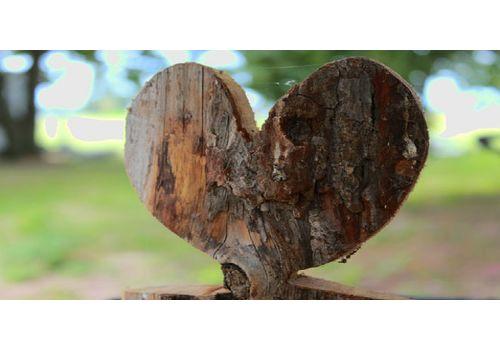 Hjertetre (Ferdighekk 125 cm+), bilde. 4